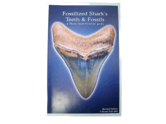 Shark Tooth Book